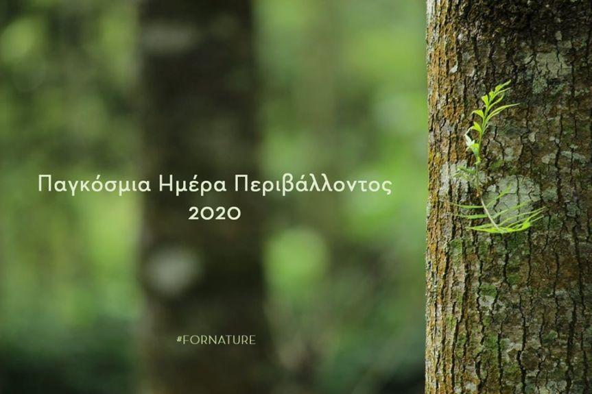 Το μήνυμα της ΠτΔ Κατερίνας Σακελλαροπούλου για την Παγκόσμια ΗμέραΠεριβάλλοντος